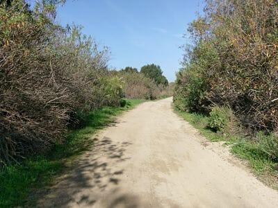 Hiking and Mountain Biking Trails